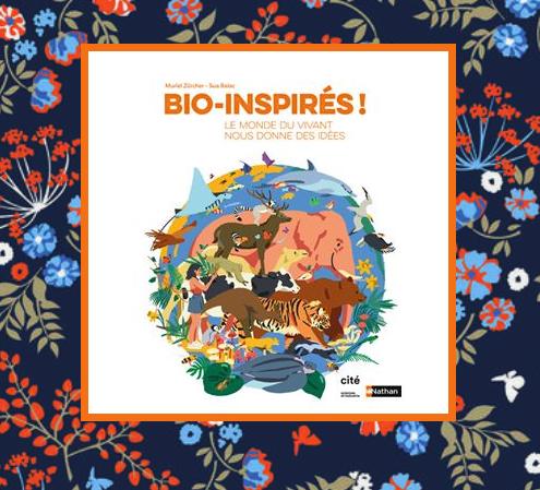 bioinspireres.png